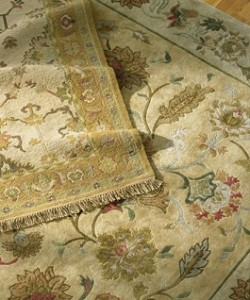 Rug, Oriental and Carpet cleaning in Washington DC and suburbs